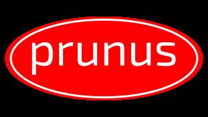 Logo Kečup Prunus